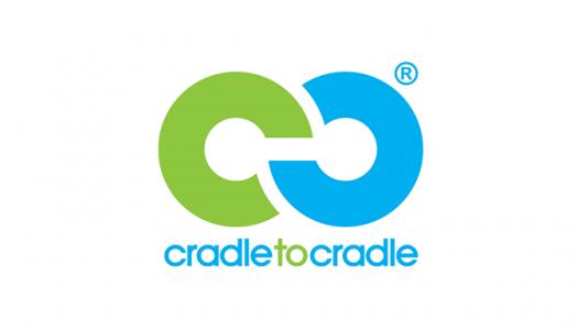 Image cradle