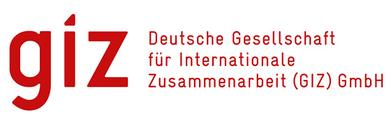 Image giz logo