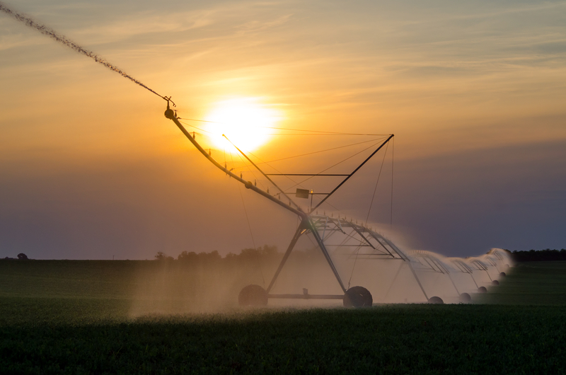 Image irrigation dreamstime s 55509613
