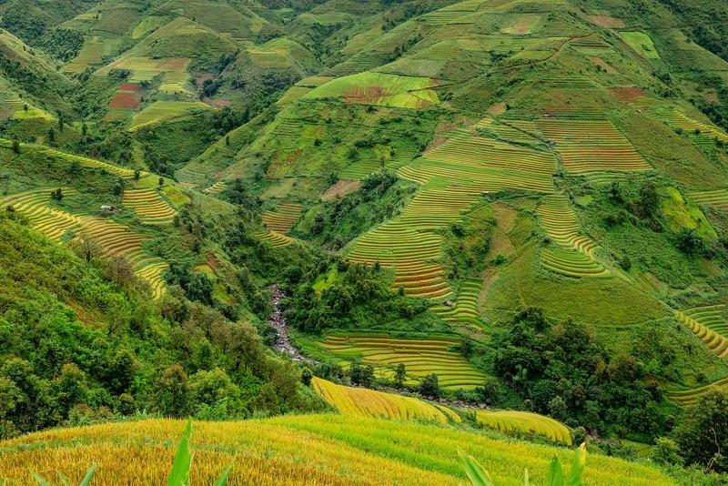 Image terraces 5568679 1920