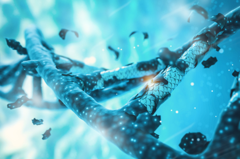 Image genome dreamstime xs 103373552