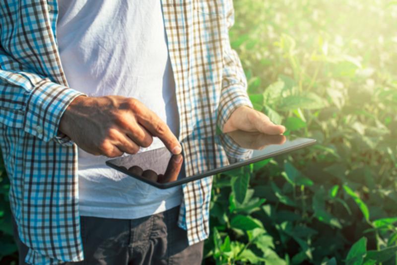 Image farmer dreamstime xs 74856379