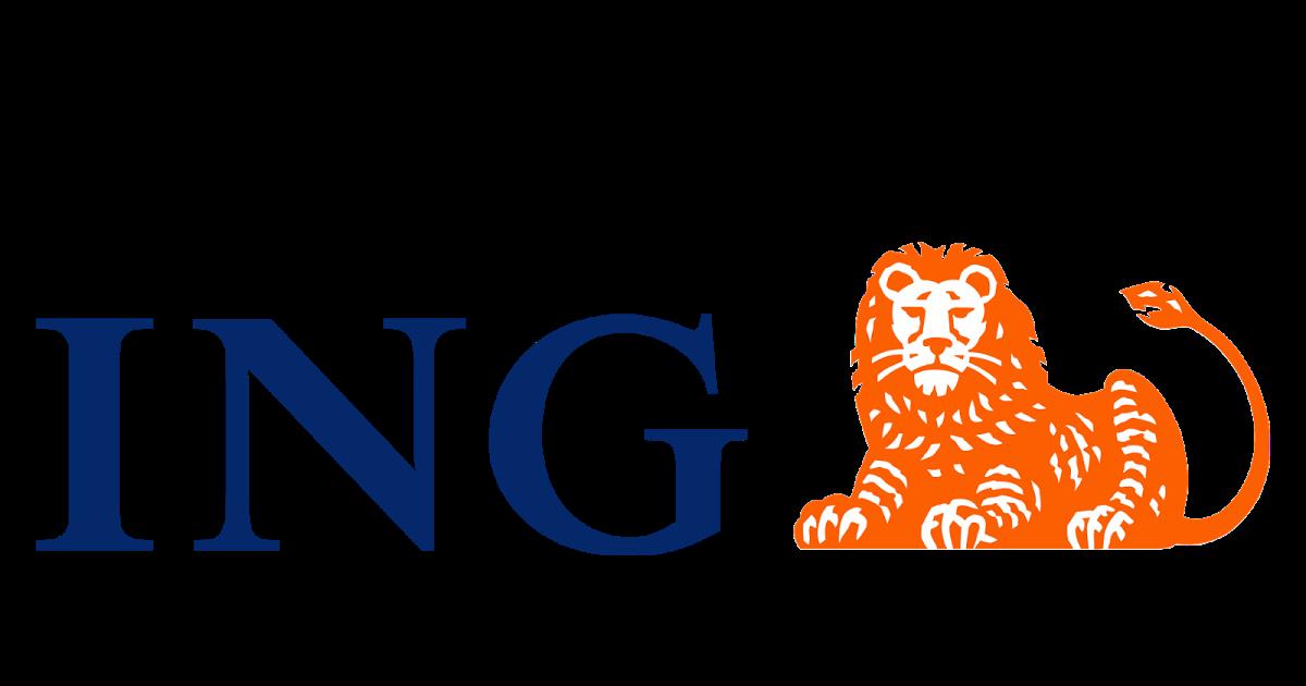 Image ing vector logo